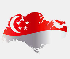 Singapore Immigration and Visa Online