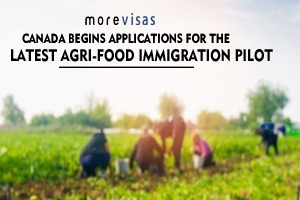 Canada Begins Applications for the Latest Agri-Food Immigration Pilot